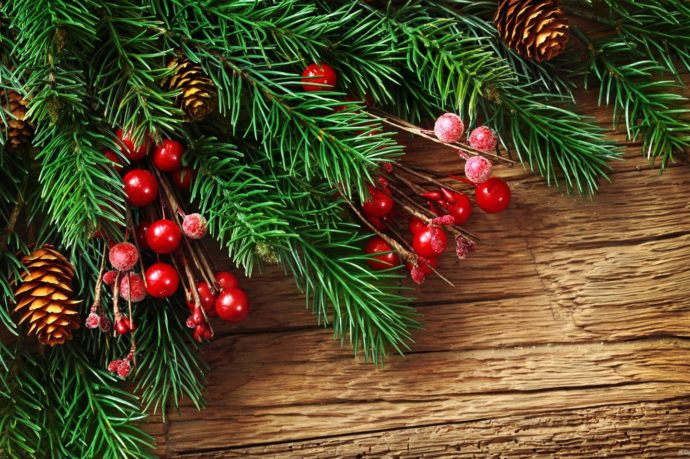 new-year-s-pine-boughs-and-red-decorative-balls-2K-wallpaper